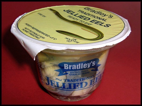 canned eels