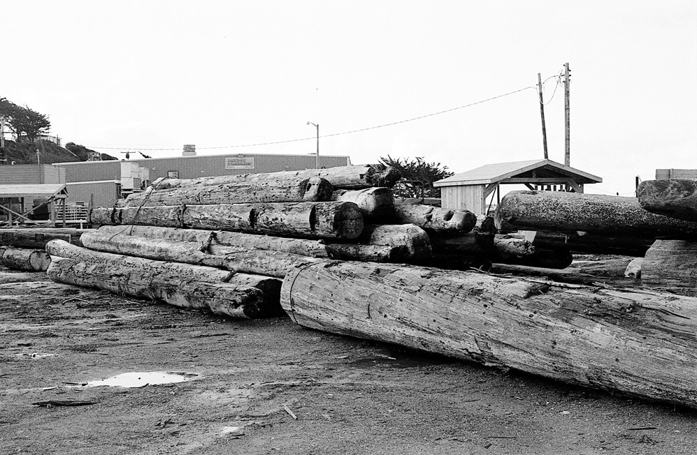 Logs along First Street