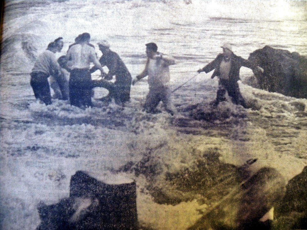 Bob Fisher pulled from the sea