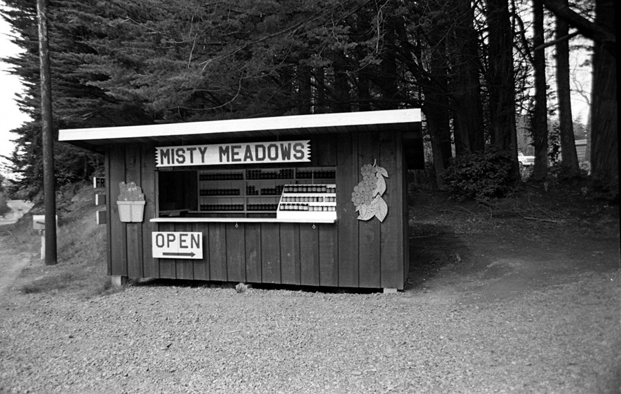The first Misty Meadows jam stand, 1975