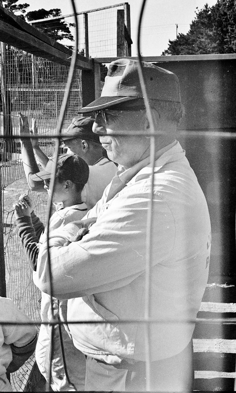 Mr. Peewee Baseball