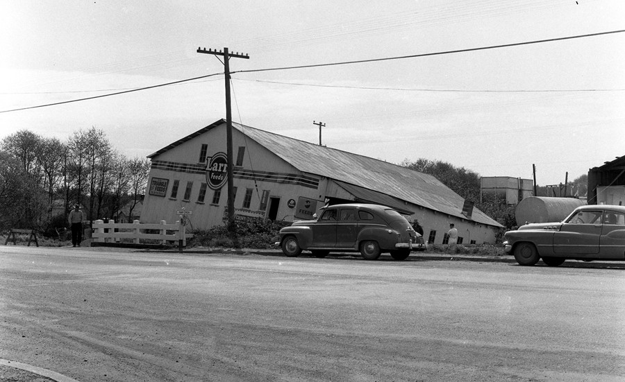 Feed store falling into Ferry Creek, 1956
