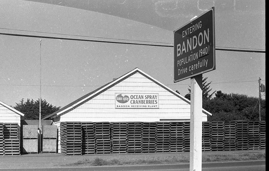 Bandon population, 1974