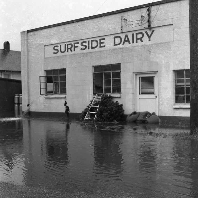 flooded Surfside Dairy