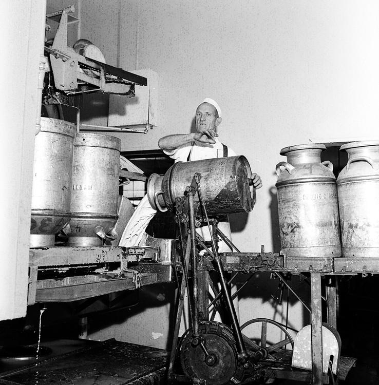 Co-op employee John Gardner dumps milk into the hopper in 1958