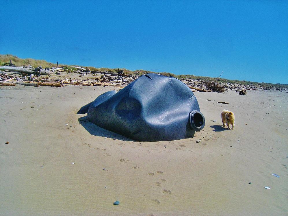 Japanese tsunami beach junk
